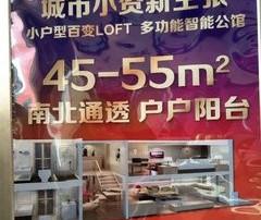 LOFT精装现房,挑高5米,万达商圈,租金2500起以租养贷