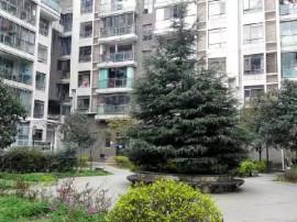 单价仅3900元买 金阳6跃7中空复式楼 带花园露台 带地暖