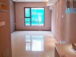 恒大睿城l公寓可以**可注册公司使用,精装交房 送家电公寓房地暖