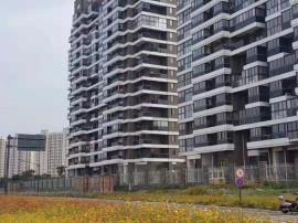 嘉兴 低单价9500 门口坐拥3.5亿两大麟湖公园 双阳台